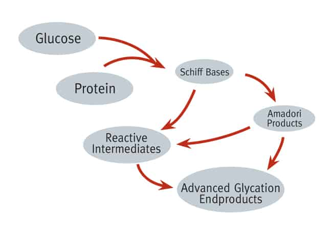 Advanced Glycation End Product